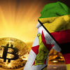 国民苦しめる金融課題の解決へ ジンバブエでGolixに続く新たな取引所が開設