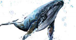 仮想通貨市場と3頭の「クジラ」|巨大金融機関参入の機運高まる