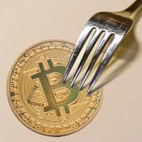 切迫したフォーク、ビットコインキャッシュと起こりうる混乱-準備はできているか?