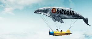 ビットコイン急落と「クジラ」の影響に関する仮想通貨調査報告書が公開