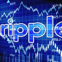 リップル取引所比較