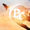 仮想通貨ビットコインキャッシュが6万円まで急騰|高騰要因のハードフォークはどうなる?
