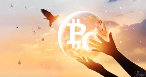 仮想通貨全面安の中「ビットコインSV」が逆行高、ビットコインABC(BCH)を上回り時価総額5位まで浮上
