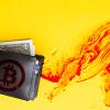 仮想通貨市場の『クジラ』が数千億円規模のビットコインを買い注文か