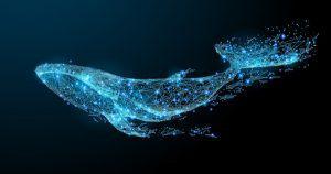 半年以内に新たなクジラ到来か、仮想通貨資産は指数関数的な成長が見込める|米経済番組
