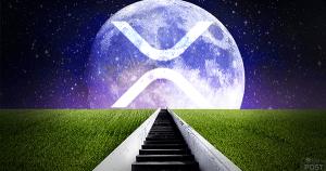 リップル(XRP)を基軸通貨とした仮想通貨取引所XRP Unitedが始動