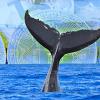 8月下旬に巨額のビットコインを動かした『クジラ』の正体は | 白熱するネット探偵の推理