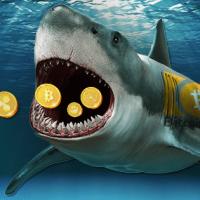アルトコイン空ブロック採掘報酬をビットコインキャッシュ購入に当てる仮想通貨マイニングプールが誕生