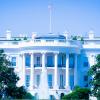 米大統領選候補者が仮想通貨アメリコインを推進、米ドルとの置換を目指す