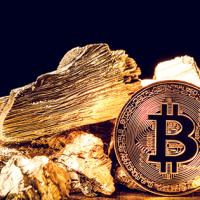 若者世代、コロナ禍で「金よりビットコインを選択」 モルガンスタンレー幹部が指摘