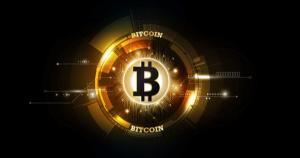 仮想通貨ビットコインの非公式開発者会議、発行上限引き上げ・半減期の撤廃を検討|反対派の意見で新たな進展