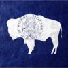 米ワイオミング州、仮想通貨を分類する法案が法律へ|3月1日より実施