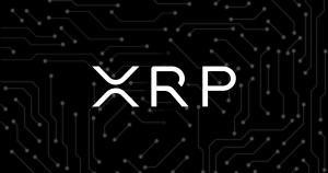 XRPで社会貢献 リップル社理事長が仮想通貨で米大学へ過去最高額の寄付を実施