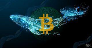 前回のビットコイン(BTC)下落時に大口クジラが「押し目買い」