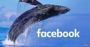 フェイスブックの独自仮想通貨「GlobalCoin」6月18日にホワイトペーパー発表迫る