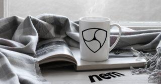 NEM移行対策グループ、新通貨「Catapultトークン」のアプローチ法など重要提案