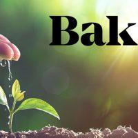 【独占】Bakktのビットコイン先物、欧米の機関投資家ニーズに見通し 関係者が明かす最新状況
