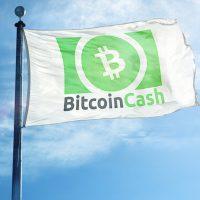 ビットコインキャッシュ関連のBitcoin.comが取引所トークンの販売を計画、仮想通貨BCH前日比15%高騰