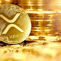「有価証券ではなく通貨だと判断を」──XRP擁護派が米政府に陳情書を提出